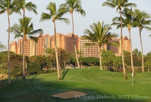 Aulani, a Disney Resort & Spa / Aulani, a Disney Resort & Spa, in Ko Olina, Oahu Hawaii.  / by Mouse Tales Travel