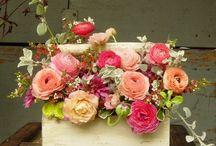 Wedding Ideas / by Dicksy Presley