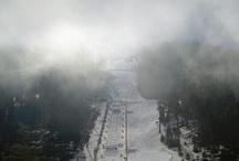 Skiing / by Rodney Harrell