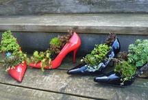 Gardens and Gardening / by Doris Valdespino