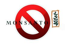Monsanto (GMO) / Monsanto (GMO) is a death warrant. More and more nations, territories states are banning Monsanto (GMO).  #Monsanto #GMO #evil #government #bigbusiness #socialist #facsist #marxist #liberals #rinos #death #populationcontrol #mutants #progressives #democrats #republicans / by David Thomas