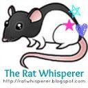 RATS / by Valerie Fletcher