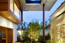 Outdoor Edens / by Linda Ravin Lodding