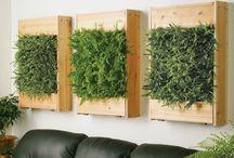 Unusual Garden Ideas / by Mariechen Palm