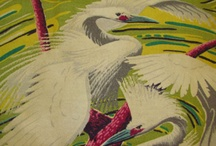 birds / by Maree Patterson
