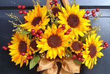 Sunflowers / by Dana Schwartz