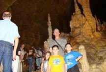 Cavernas y Cenotes / by Galiazzi Familia