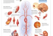 Health Infographics / by EOU Health & Wellness