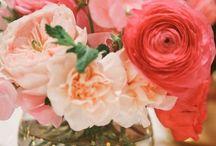 Flowers make me happy / by Larissa Vargas
