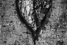Things I love <3 / by Christine Fuchsel