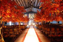 fall wedding / by Amy Tebo