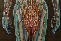 Energy anatomy / by Renee Rosky