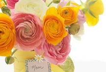 Yellow & Pink Inspiration / color scheme of Yellow & Pink Insipiration / by Barbara Ortega-Alicea