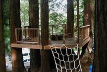 tree deck / by Amy Gehner
