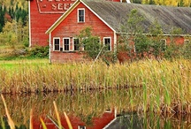 Barns / worn and weathered...simply beautiful! / by Marie Deserae Roberts-Crafts