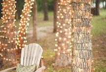 Yard Ideas / by Katie Powers