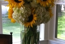 Sunflowers / by Kelly Odom