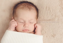 Newborn Photography / by Nicole Hammontree