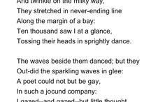 Poets / by Taryn Domingos