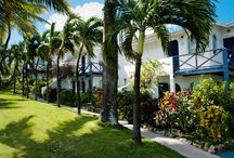 Our Beautiful Trade Winds Hotel / by Trade Winds Hotel Antigua