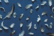 inspire // patterns & textures / by Stasi Jorgenson