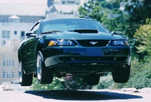 2001 Ford Mustangs / 2001 Ford Mustangs / by StangBangers