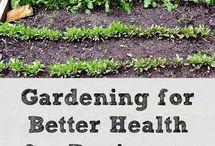 garden, plants, growing food / by Krista Herbst