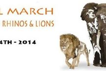 Global March, Amsterdam, 4 oktober 2014 / by stichting SPOTS