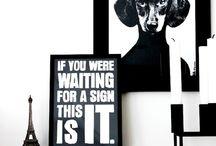Typography / by Darren Ottley