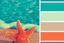 Color / by Caroline Kastner
