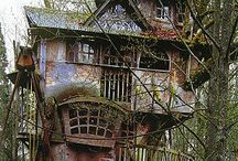 Treehouses / by Girl in Air
