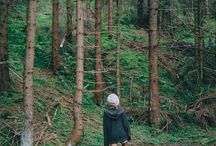 Into the woods / by Victoria Pichel