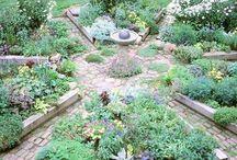 Backyard - Raised Garden Design / by Diane Davis
