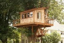 Tree House Life  / by April Vaughn