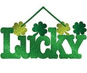 Luck of the Irish! / by Jodie Blenis Wainwright