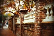 Charleston - a beautiful place to live and visit! / by Charleston Museum