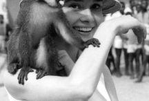 Audrey Hepburn / by Kristianna Zacharias