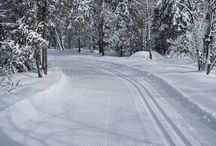cross country skiing / by Marcy Cox