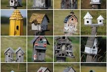 Bird Houses / by Barbara Benson
