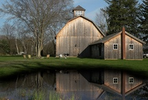 Old barns / by Bruce Yager