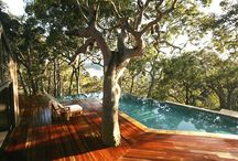 Amazing Homes/Home Features / by Aimee Lauder