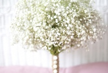 Wedding Decorations / by Jessica Hul