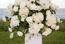 Florals / by blush by brandee gaar
