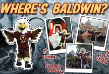 """Where's Baldwin?  / Traveling for the summer? Opting for a staycation? Baldwin wants to tag along. Participate in the """"Where's Baldwin?"""" photo contest by printing everyone's favorite mascot here (http://on.bc.edu/FlatBaldwin). Snap a photo with Baldwin and send it to social@bc.edu or tag us on social media channels with #WheresBaldwin. The most """"liked"""" entries will be included in a drawing at the end of fall semester for a fantastic BC prize pack. / by Boston College"""
