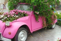 gardens on wheels... / by Two Women and a Hoe®