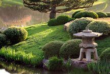 Chicago Botanical gardens...flowery bliss / by Christiane Maria Bruelemans-Fick