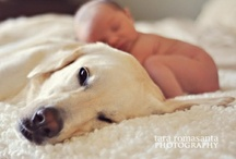 Too cute! / by Jessie Nuez