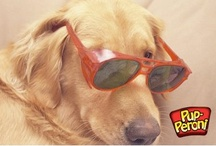 Pup-Cessories / by Pup-Peroni®