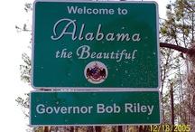 Alabama / by Michelle Miraglia