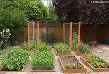 Gardening / by Kristen Black